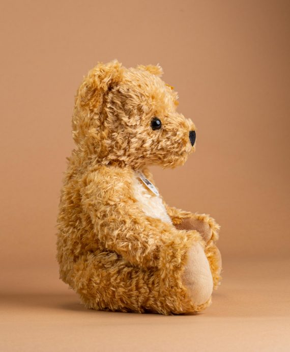 Paddy Teddy Bear by Steiff - Send A Cuddy