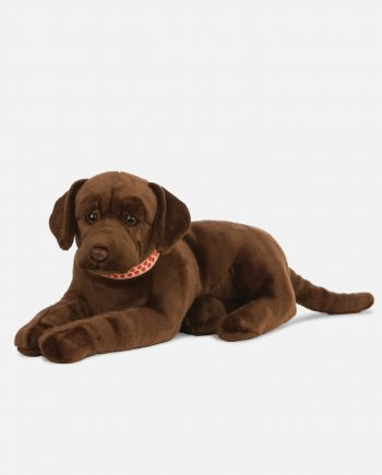 Giant Chocolate Labrador