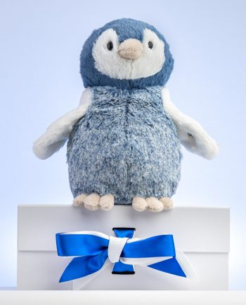 Paule Penguin Soft Toy Gift - Send a Cuddly