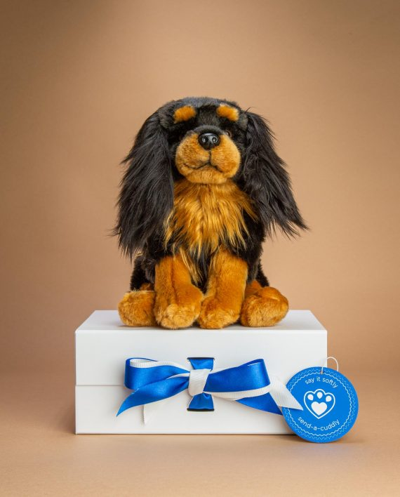 Black and Tan King Charles Spaniel soft toy gift - Send a Cuddly