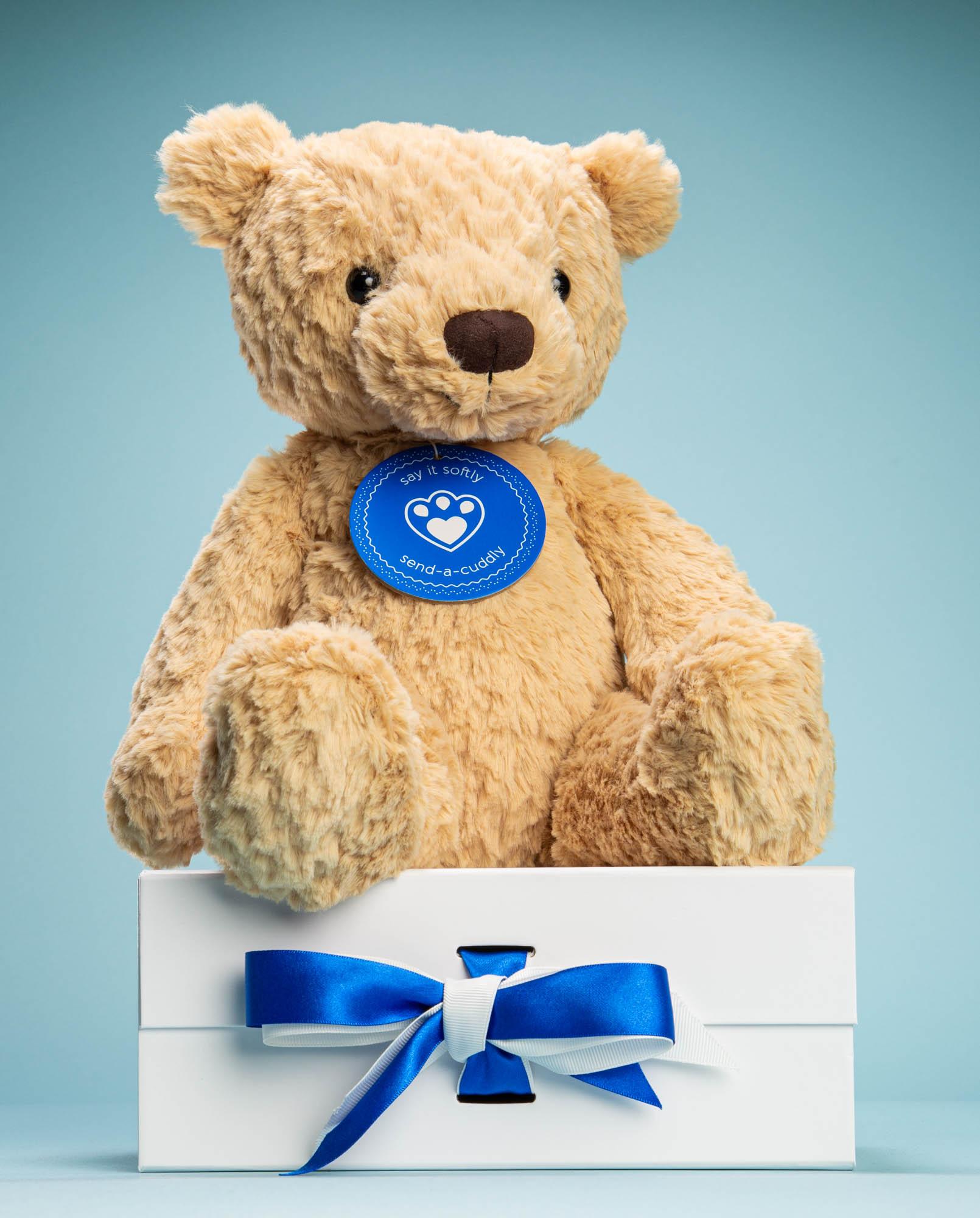 Finley Teddy Bear soft toy gift - Send a Cuddly