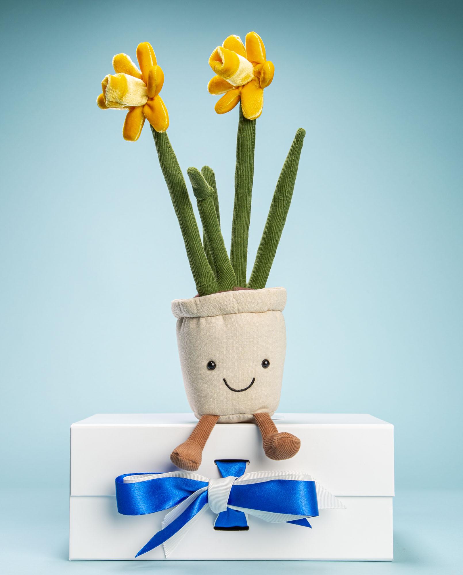 Cuddly Daffodil