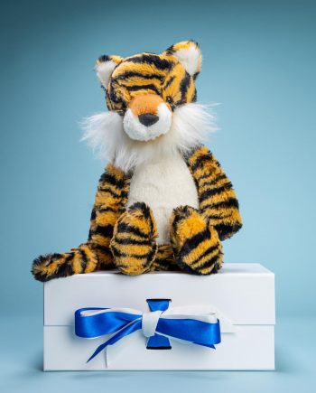 Tiger cuddly soft toy gift