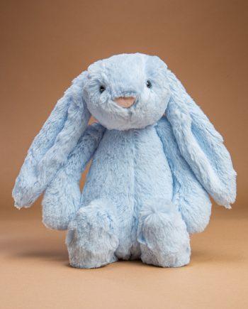 Pale Blue Bunny