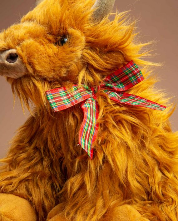 Highland Cow with ribbon