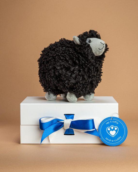 Jellycat Rolbie Black Sheep soft toy gift - Send a Cuddly