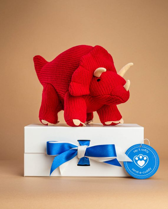 Triceratops Knitted Toy