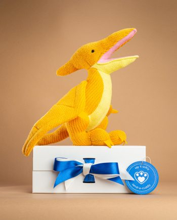 Knitted Pterodactyl Toy-Send a cuddly