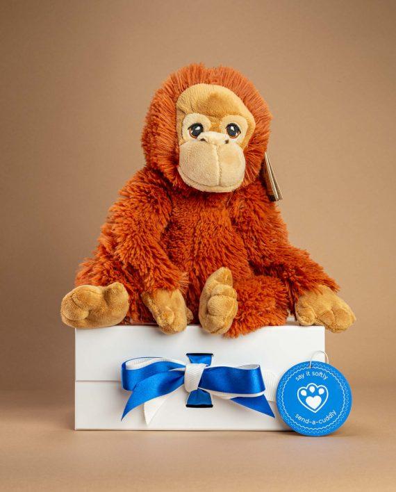 Orangutan Soft Toy Send a Cuddly