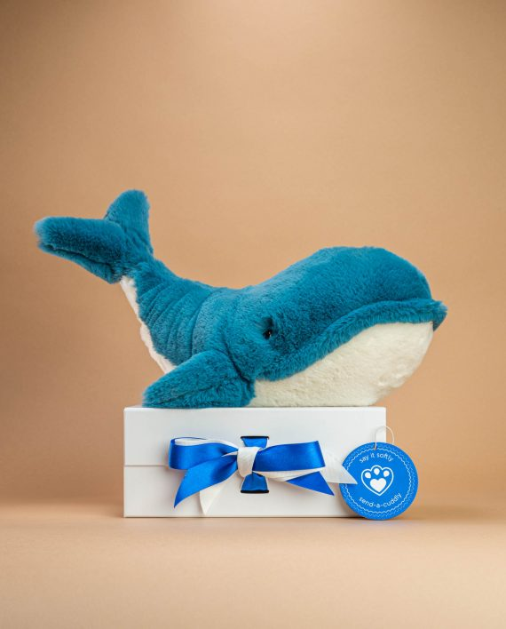 Wally Whale Soft Toy