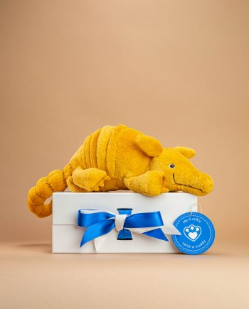 Armadillo Soft toy - send a cuddly