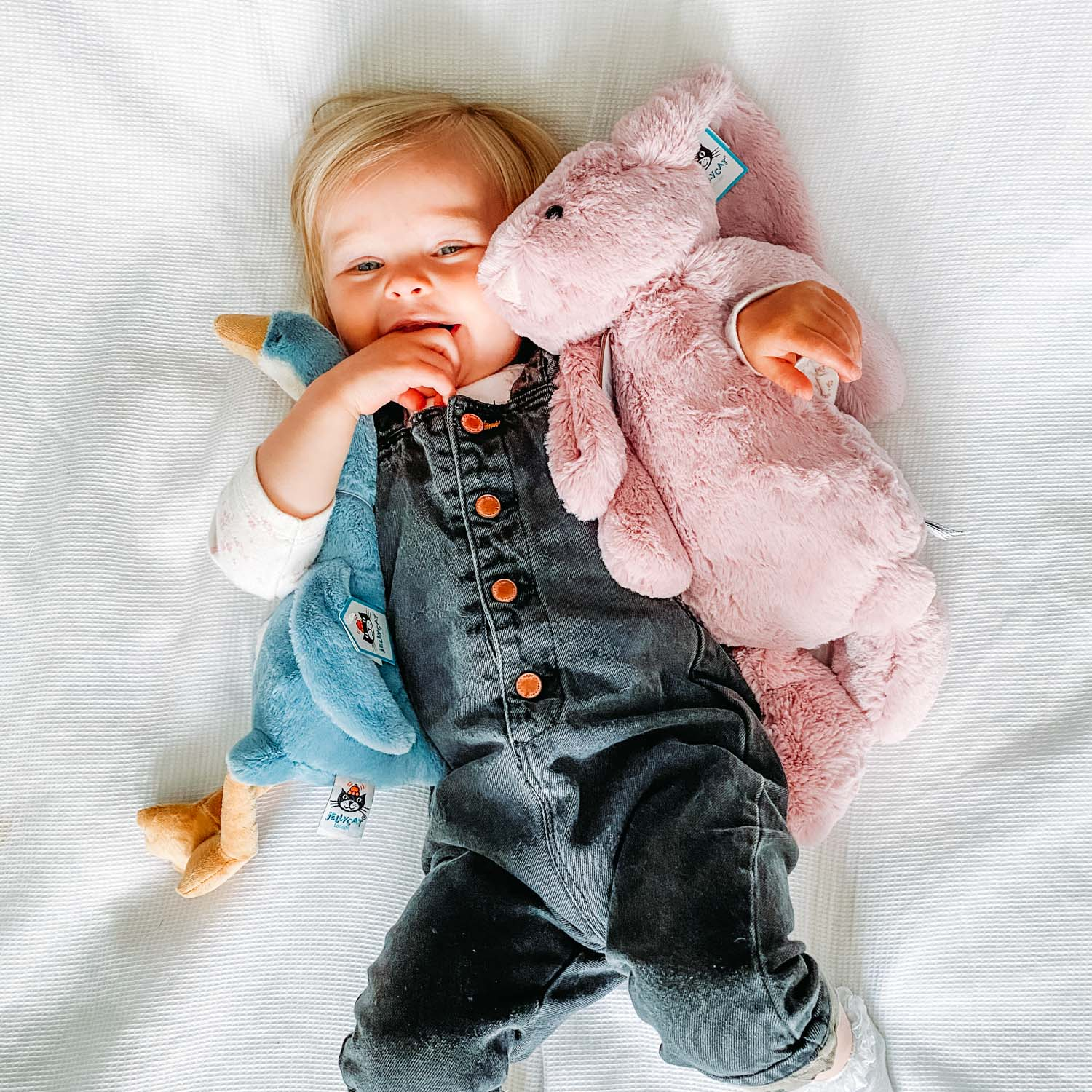 Baby Soft Toy Gifts - Send a Cuddly