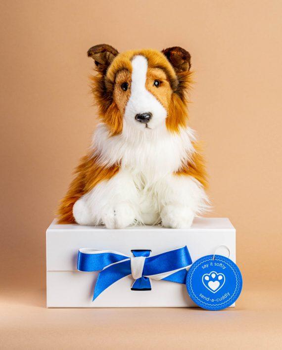 Shetland Sheepdog Soft Toy - Send a Cuddly