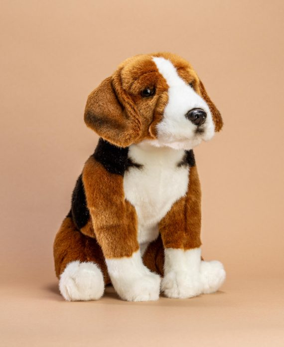 Hamilton Hound Dog Soft Toy Gift - Send a Cuddly