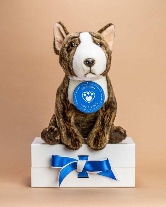 Bull Terrier Dog Soft Toy Gift - Send a Cuddly