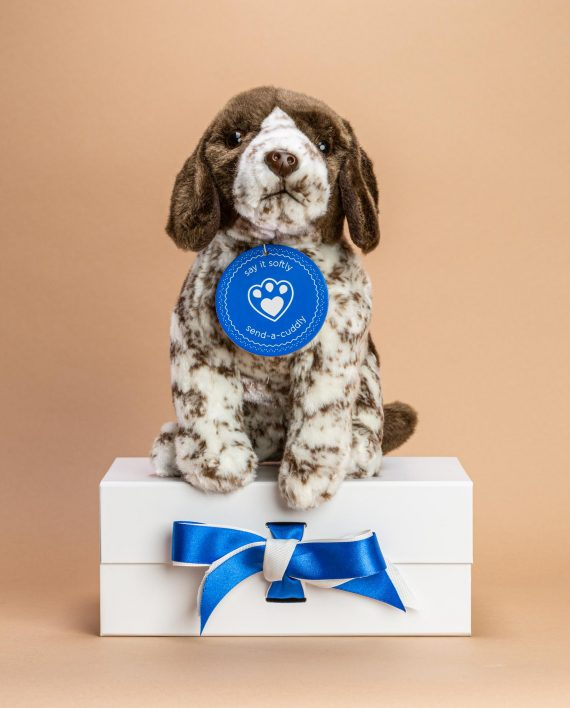 German Shorthaired Pointer Dog Soft Toy Gift - Send a Cuddly