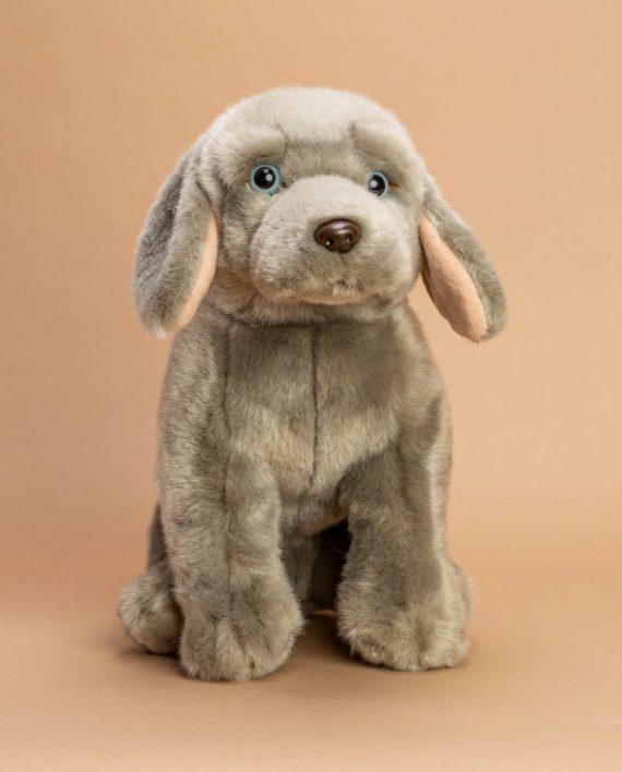 Weimaraner Dog Soft Toy Gift - Send a Cuddly