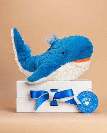 Blue Whale Soft Toy Gift - Send a Cuddly