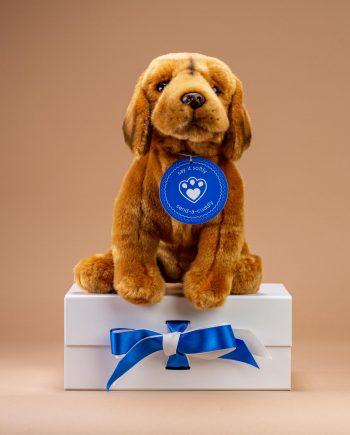 Hungarian Vizsla Soft Toy Dog