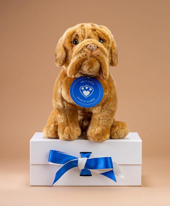 Dogue de Bordeaux Soft Toy Gift