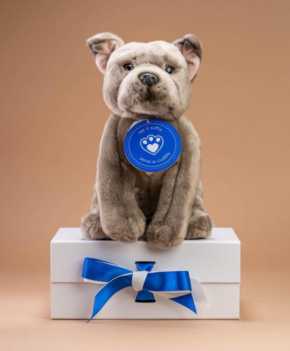 Staffordshire Bull Terrier Soft Toy - Send a Cuddly