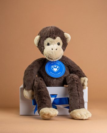 Jellycat Pandy Chimpanzee - Send A Cuddly